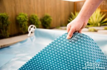 May 2017 Special Upgrade Daisy Pool Cover 800